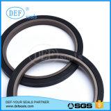 Guarnizioni del pistone di PTFE per il cilindro resistente