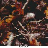 Véritable arborescence Camo Wtp Films Films hydrosolubles B034b461HP Hydrographie