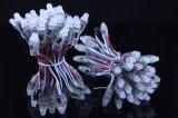 Alta calidad de color RGB Control DMX5050 SMD LED DE 12V CC Pixel