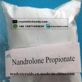 단백질 종합을 승진시키기를 위한 (NPP) 분말 Nandrolone Phenylpropionate 백색 보충교재