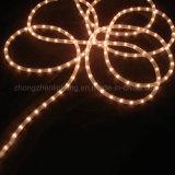 가정 훈장을%s 중국 공급자 지구 LED 밧줄 빛