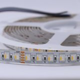 Chip di RGBW 4 in 1 indicatore luminoso di striscia di 5050SMD LED 96LEDs/M