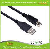 cabo do USB 2.0 de 6FT um macho ao macho de B