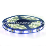 144 LEDs/M RGBW 4 en 1 luz de tira del color LED
