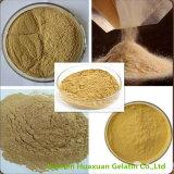 좋은 품질 Icariin Epimedium 잎 추출