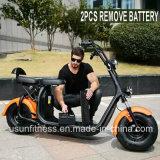 Motocicleta eléctrica barata de la vespa para el adulto