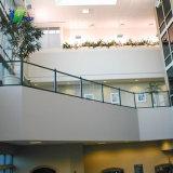 Varanda do painel de vidro balaustrada, Varanda grades de vidro de segurança de Design