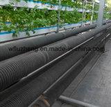 温室に使用するHfwのひれ付き管温室育ちのガラス工場の鋼鉄ひれ付き管