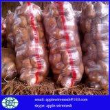 Gemüseineinander greifen-Beutel für Kartoffel oder Zwiebel