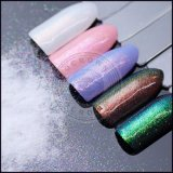 Multi Color Galaxy Glitter Holo holographique de pigment pour ongles Chrome