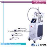 Het Verlies van het Gewicht van de Therapie van Cryo van vier Handvatten en de Machine van het Vermageringsdieet van het Lichaam
