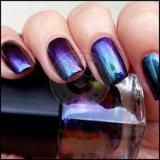 El Efecto camaleón de la belleza de uñas de gel UV Chrome el polvo de pigmento