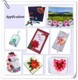 Flor de papel artesanal DIY Kit de materiales de gran Rosa laminados