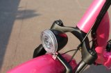 Vendita calda 48V che piega bici elettrica
