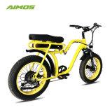 750W de los asientos dobles neumático Fat Bicicleta eléctrica