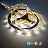 Promoción! Alto brillo SMD5050 TIRA DE LEDS para interiores, exteriores