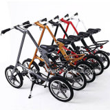工場価格(NY-FB001)の新しいデザイン折るバイク