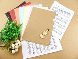Omslag van het Dossier van het Karton van het Document van de douane de Promotie Plastic
