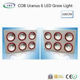 Hot-Sale COB Urano crecer 6 LED de luz para el cultivo comercial