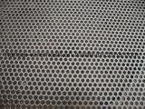 304/316L het roestvrij staal Geperforeerde Blad van het Netwerk van het Metaal