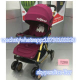 Baby-Spaziergänger der China-Fabrik-0-3years