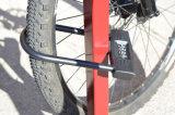 Het u-Slot van de Combinatie van de fiets