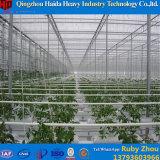 다중 경간 농업 PC 장 온실 유형