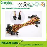 La Chine fournisseur personnalisé connecteur d'alimentation électrique et assemblage de câbles du faisceau de fils