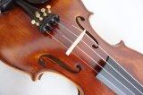 Violini opachi a metà Handmade naturali piacevoli di rivestimento della fiamma