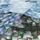 Talla de la madre del mosaico del shell del material de construcción de Preal