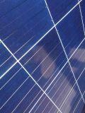 Poli pila solare di alta efficienza 4bb per il comitato solare 310W