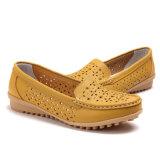 여자의 최신 디자인은 호흡한다 가죽 신발 정장 구두 (FTS1020-20)를