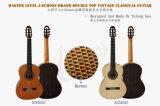 Do dobro mestre do concerto de Aiersi guitarra clássica superior (SC03SZ)
