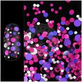 Flocos cosméticos da poeira do laser da decoração do salão de beleza do prego da classe