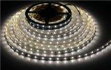 Striscia impermeabile di W/RGB 3W SMD2835 LED per la decorazione dell'aeroporto/hotel/Camera con 3 anni di garanzia