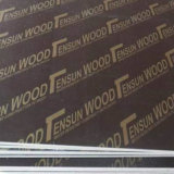 필름 Faced Plywood와 Marine Plywood