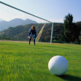 De kunstmatige Sporten die van het Gras voor het Gras van de Voetbal vloeren