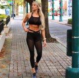 최신 판매 검정 스포츠 여가는 입는다 각반 바지 (3035)를