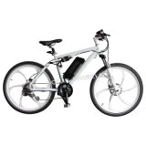 Neues Auslegung-Lithium-Batterie-elektrisches Fahrrad (TDE-035F)