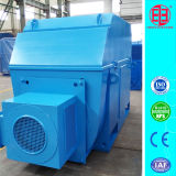 308V~11kv 100kw~10000kw High Voltage Slip Ring Induction Motor