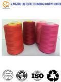 Filato cucirino del ricamo per la macchina per cucire Using il materiale di 75D/2 Polyeater