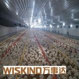Chambre de poulet préfabriquée de Chambre d'oiseau de structure métallique