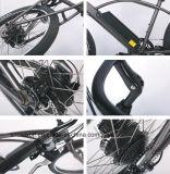 26 새로운 바닷가 함 전기 자전거 E 자전거 36V 48V 250W 500W