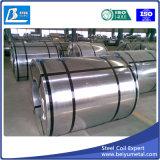 Hoja de acero galvanizada en bobinas 2m m densamente