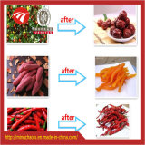 Gemüse 3 Schichten Riemen-trocknende Maschinen-heiße Verkaufs-