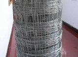 경첩 관절 매듭 가축 담