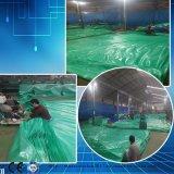 voor het Geteerde zeildoek van pvc van de Markt van Brazilië voor Tent