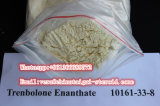 Esteróides Trenbolone Enanthate/Tren E CAS 10161-33-8