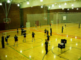 Indoor Volleyball와 Basketball 중국제 Factory를 위한 신축성 Roll Sports PVC Sports Flooring