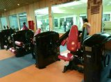 Banco di esercitazione del muscolo/strumentazione di ginnastica costruzione di corpo/banco piano olimpico /Tz-6023